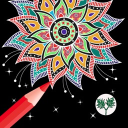 Enchanted Forest Art Class- Coloring Book for Adults with Stress Relieving Patterns