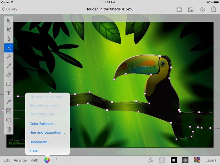 iDesign Touch: 2D Vector Drawing & Design screenshot-3
