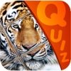 My Top Animal Magic Tile Playtime Quiz - Free App