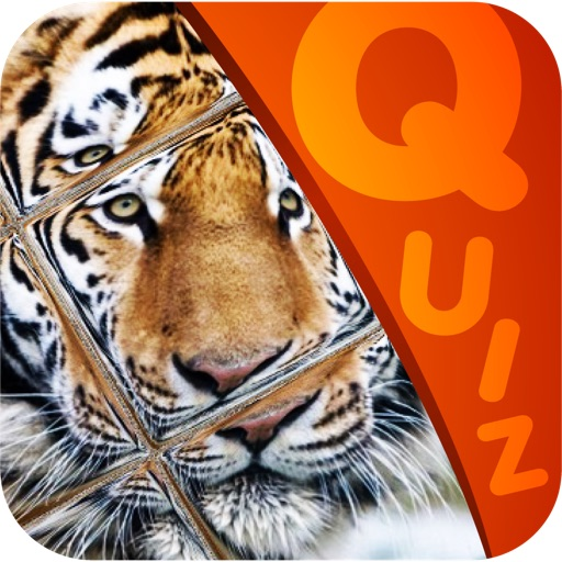 My Top Animal Magic Tile Playtime Quiz - Free App