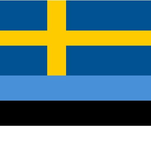 Swedish - Estonian - Swedish dictionary