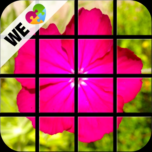 Beautiful Flower Puzzle Set (by WE LOVE PUZZLES)