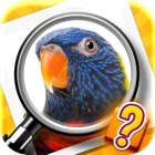 Zoom Quiz: a game of zoomed in pictures icon