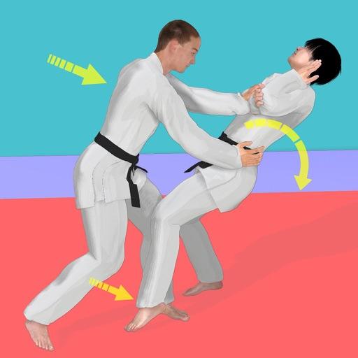 Aikido Academy