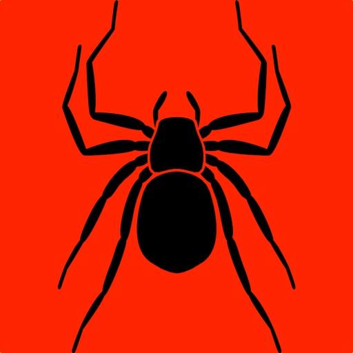 3Strike Spiders
