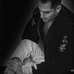 BJJ Crash Course