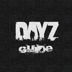 Strategy Guide for DayZ