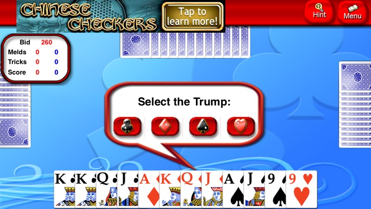 Pinochle Lite screenshot-3