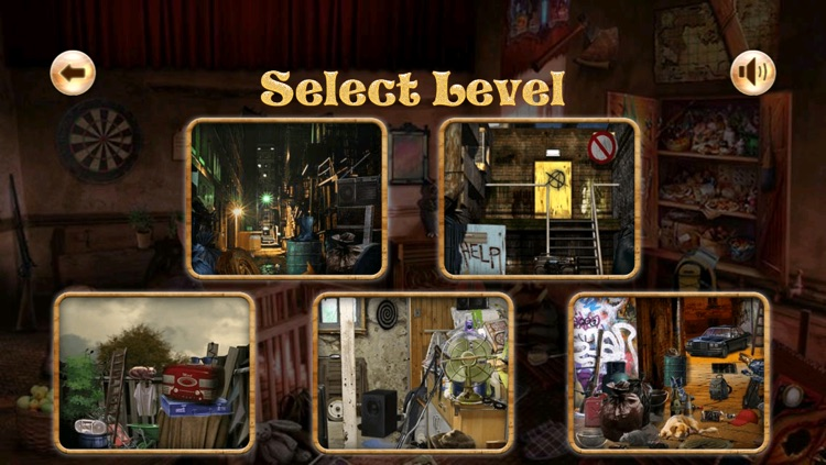 Detective Angelina Hidden Objects