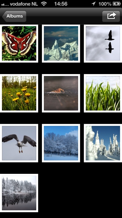Smart Photo Album - Unlimited Tags, Filters and Albums screenshot-3
