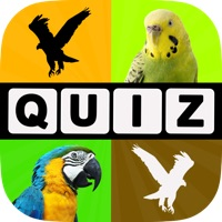 Codes for Allo! Guess the Bird Type Trivia - Bird Watching Photo Quiz Hack