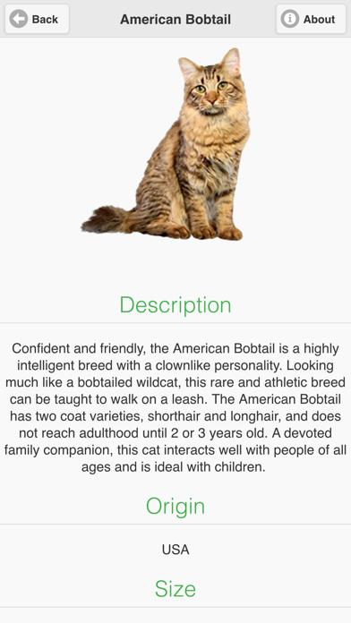 Cat Breeds Free screenshot three
