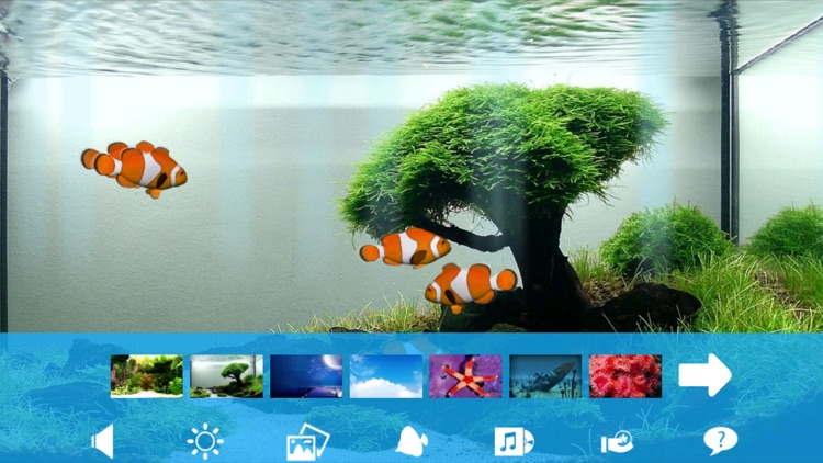 Aquarium Now screenshot-4