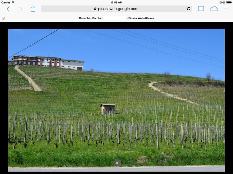 Barolo & Novello Wine Map