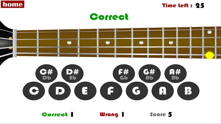 Bass Guitar Training Tool