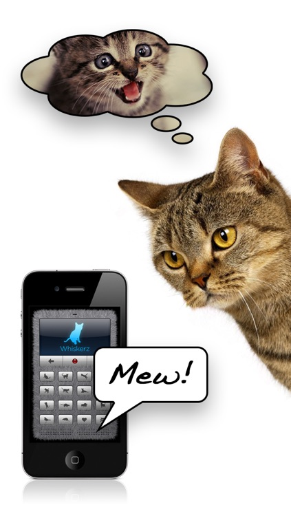 Human-to-Cat Translator