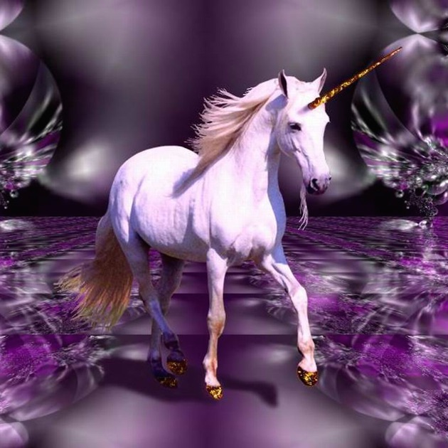unicorn wallpapers images wallpaper and free download