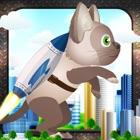 Jetpack Cat Madness: Animal Warriors Adventure icon