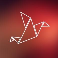 Activities of Flappy Origami