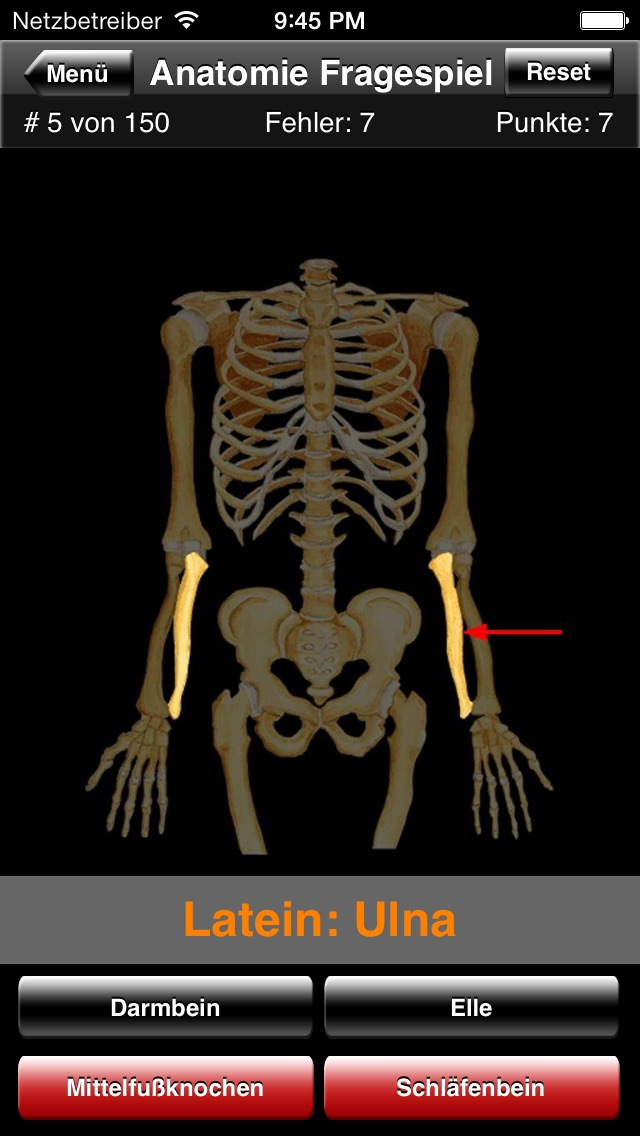 Anatomie FragespielScreenshot von 4
