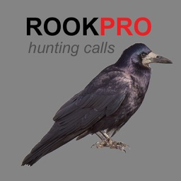 REAL Rook Hunting Calls - 10 REAL Rook CALLS & Rook Sounds! - ROOK eCaller - BLUETOOTH COMPATIBLE
