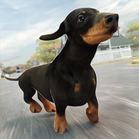 Codes for Funny Doggy | Dog Running Training Simulator Game for Free Hack