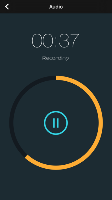 Combo Audio & Video Recorderのおすすめ画像2