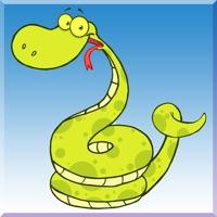 Schlangen Glitten In Viereckiger Kasten