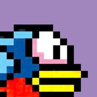 Bird Watch Game Free free Resources hack