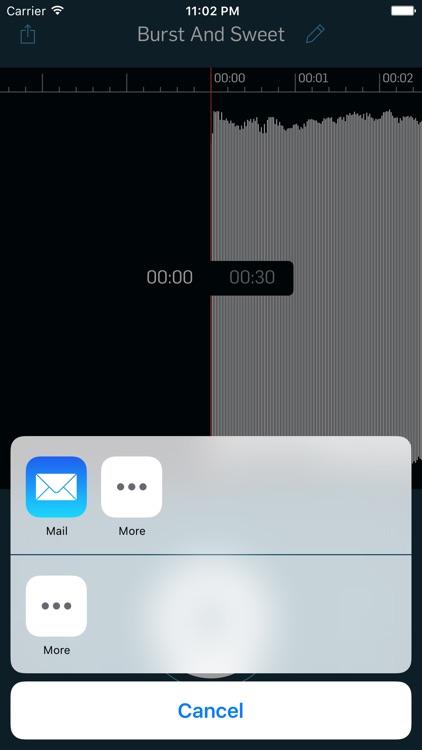 WireTap Riff Recorder screenshot-3