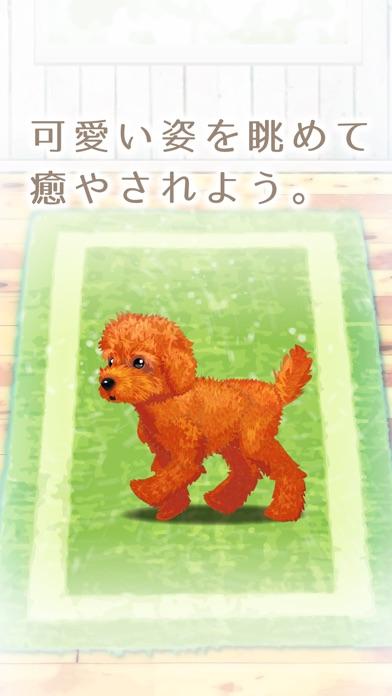 癒しの子犬育成ゲーム〜トイプードル編〜(無料)紹介画像5