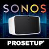 Pro Setup for Sonos Surround Sound