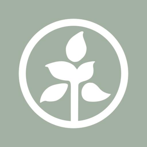 Roots Yoga Studio: Toronto
