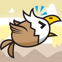 Codes for Eagle Desert Wind Hack