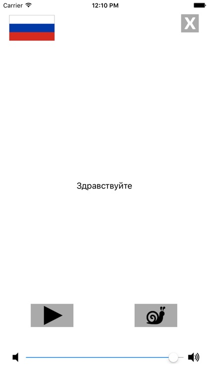 Russian / Portuguese Talking Phrasebook Translator Dictionary - Multiphrasebook screenshot-3