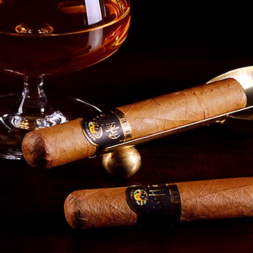 Cigar 101: Beginner's Guide with Terms and Top News