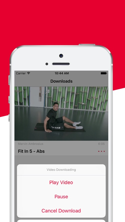 Fit Freaks - The fit in 5 fitness workout routine screenshot-4
