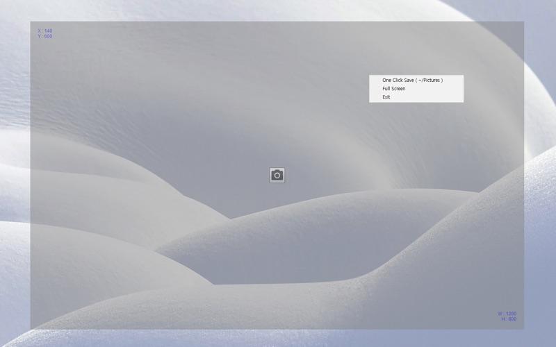 Partial Screen Capture скриншот программы 1