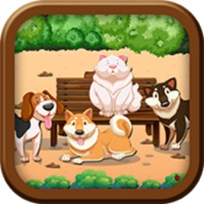 Activities of Doggy Match Mania