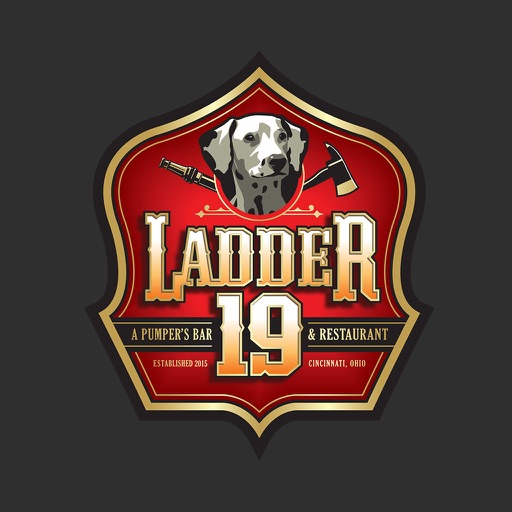 Ladder 19