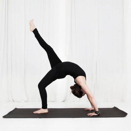 Fightmaster Yoga