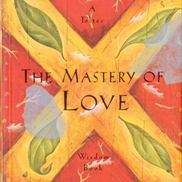 The Mastery of Love: Practical Guide Cards with Key Insights and Daily Inspiration