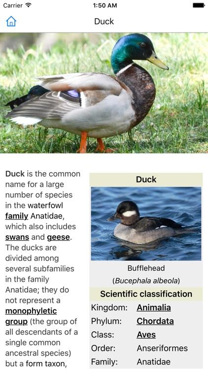 CHI Encyclopedia of Animals screenshot-3
