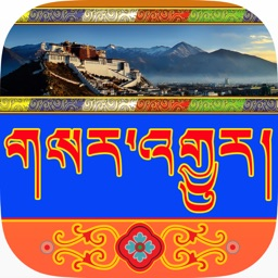 Tibetan Latest News II