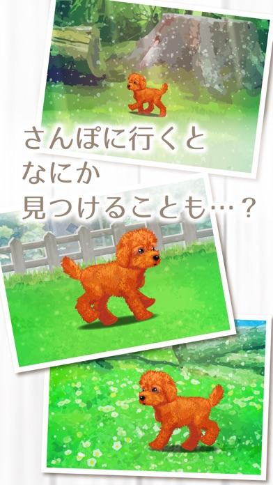 癒しの子犬育成ゲーム〜トイプードル編〜(無料)紹介画像4