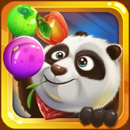 The Amazing Panda Fruits Farming - A Free 3D Puzzle Game