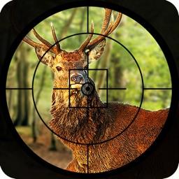 Safari Animal hunting  2016 – deer, bear and fox shooting game to increase the shooting level.