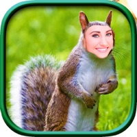 FUNNY FACE ON ANIMALS BODY - Funny Photo Changing App That