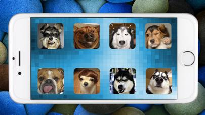 Dog Sounds Game screenshot one