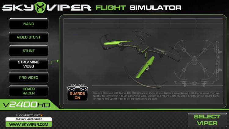 Sky Viper Flight Simulator